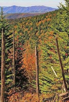 Autumn From The Top Of Clingman's Dome Poster