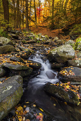 Autumn Glory At Bushkill Falls State Park Pennsylvania Usa Poster