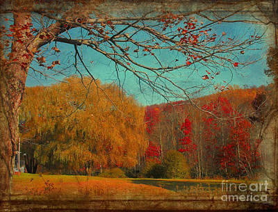 Autumn Glory Poster by Snook R