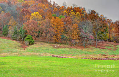 Poster featuring the photograph Autumn Hillside by Wanda Krack