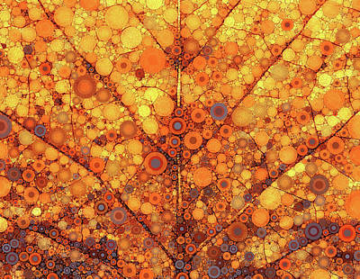 Autumn In Circles Poster by Rene Wissink