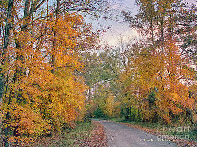 Poster featuring the photograph Autumn In East Texas by Charles McKelroy