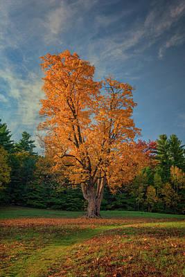Autumn In Maine Poster by Rick Berk