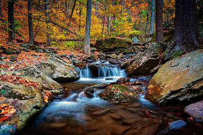 Autumn In New York Poster by Rick Berk