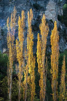 Autumn In The Hoz Del Escabas Gorge. In The Serrania De Cuenca, Spain - 3 Poster by Peter Eastland