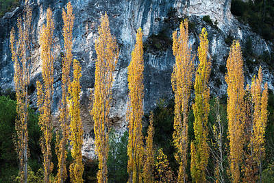 Autumn In The Hoz Del Escabas Gorge. In The Serrania De Cuenca, Spain - 1 Poster by Peter Eastland
