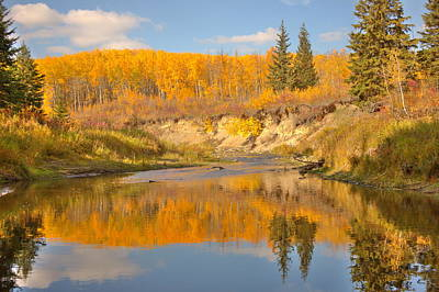 Autumn In Whitemud Ravine Poster