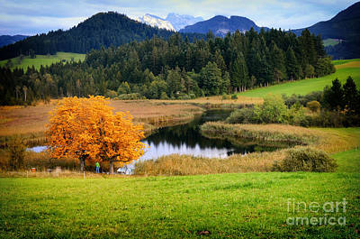 Autumn Landscape And Lake Poster