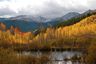 Autumn Landscape From Southern Slopes Of Mount Elbert Poster by Cascade Colors