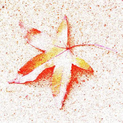 Autumn Leaf Art Poster