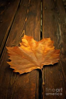 Autumn Leaf On Bench Poster