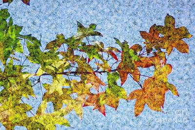 Poster featuring the photograph Autumn Leaves 2 by Jean Bernard Roussilhe
