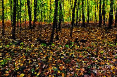 Autumn Leaves And Forest Poster by Robert Gaines
