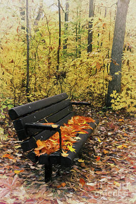 Poster featuring the painting Autumn Leaves On A Bench Ap by Dan Carmichael