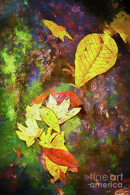 Autumn Leaves On Mossy Tree Trunk Ap Poster by Dan Carmichael