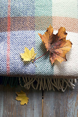 Autumn Leaves On Wool Plaid Blanket Poster