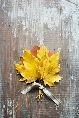 Autumn Leaves Tied With Ribbon Poster