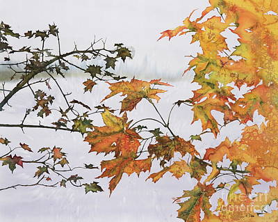 Autumn Maples Poster by Carolyn Doe