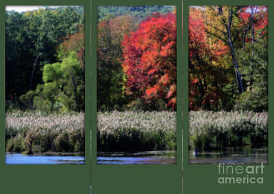 Poster featuring the photograph Autumn Marsh Through A Window by Smilin Eyes  Treasures