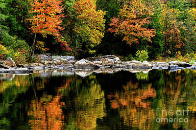 Autumn Middlle Fork River Poster by Thomas R Fletcher