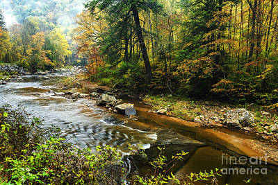 Autumn Mist Along Williams River Poster by Thomas R Fletcher