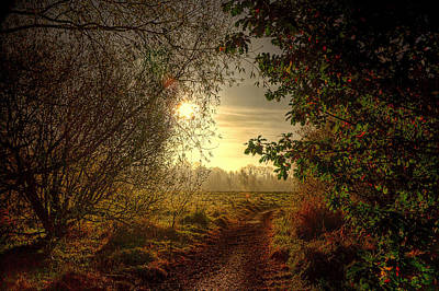 Autumn Mist Poster by Kim Shatwell-Irishphotographer
