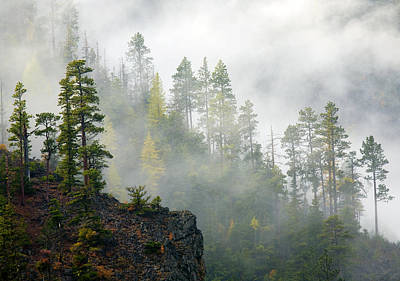 Autumn Mist Poster by Mike  Dawson