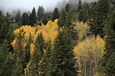 Autumn Mist, Owyhee Mountains Poster