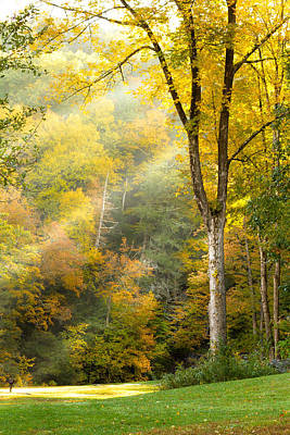 Autumn Morning Rays Poster