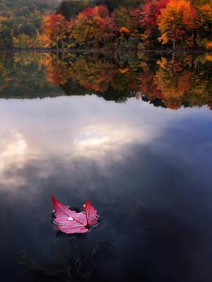 Autumn Mornings Iv Poster by Craig Szymanski