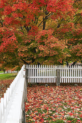 Autumn New England Poster by John Greim