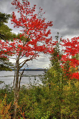 Poster featuring the photograph Autumn On Raquette Lake by David Patterson