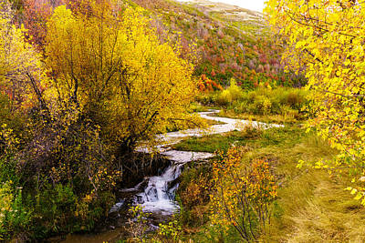 Autumn On The Provo Deer Creek Poster by TL  Mair