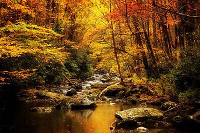 Autumn On The Tellico River Poster