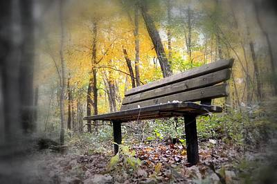 Autumn Park Bench Poster by Bonfire Photography