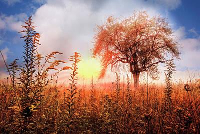Autumn Pastures Poster by Debra and Dave Vanderlaan