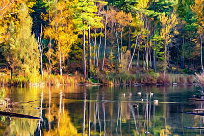 Autumn Pond - Paint Poster by Steve Harrington