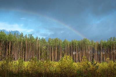 Autumn Rainbow. Sunychne, 2016. Poster