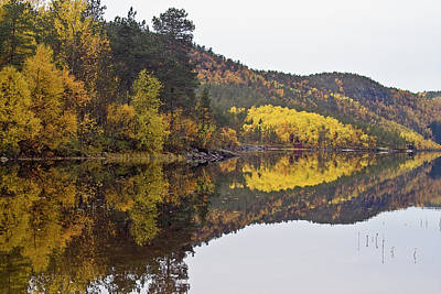 Autumn Reflections 3 Poster by Heiko Koehrer-Wagner