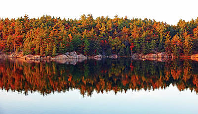 Poster featuring the photograph   Autumn Reflections by Debbie Oppermann