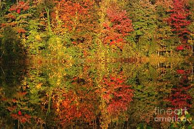 Poster featuring the photograph Autumn Reflections In A Pond by Smilin Eyes  Treasures