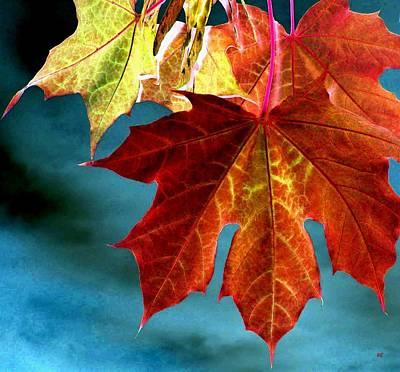 Autumn Regalia Poster