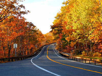 Autumn Scene With Road In Forest Poster by Lanjee Chee