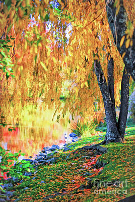 Poster featuring the photograph Autumn Scenery At The Virginia Tech Duck Pond by Kerri Farley