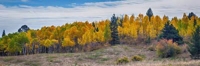 Autumn Season Aspen Panorama Scenic View Poster