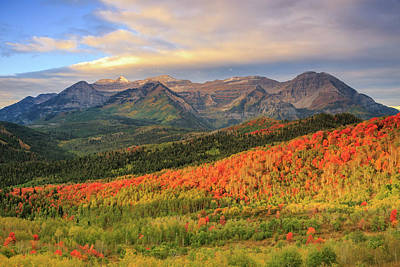 Autumn Splendor In The Wasatch Back. Poster
