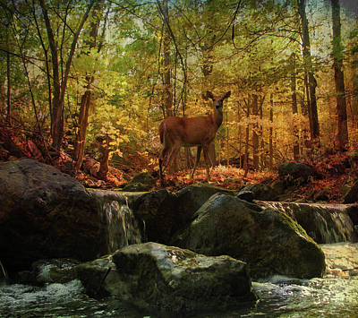 Poster featuring the digital art Autumn Splendor by Kathleen Holley