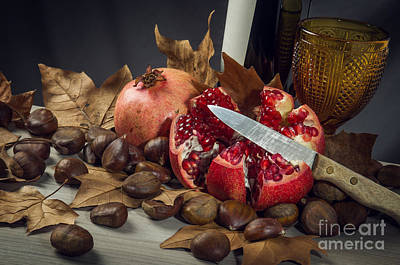 Autumn Still-life Poster by Carlos Caetano