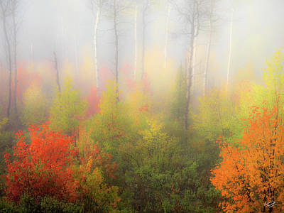 Autumn Stillness 2 Poster by Leland D Howard