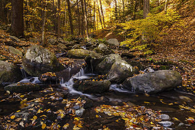 Autumn Stream In Bushkill Falls State Park Pennsylvania Usa Poster by Vishwanath Bhat